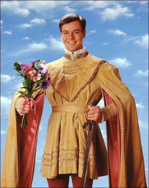 L'acteur Christopher Rich a été le Prince Charmant Eric dans une série TV amusante qui s'intitulait ?