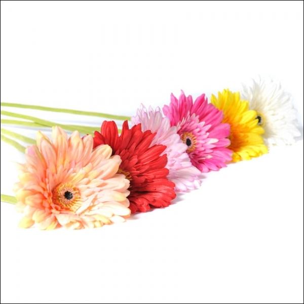 Fleur aux couleurs variées, on me retrouve dans beaucoup de bouquets, qui suis-je ?
