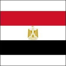 Quelle capitale a pour emblème national ce drapeau-ci ?