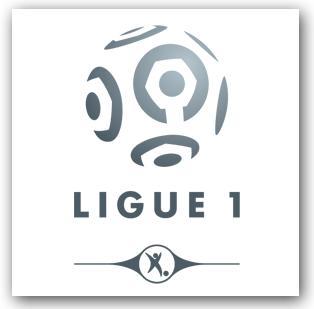Les clubs de Ligue 1 (saison 2016/2017)
