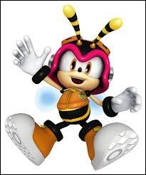 Qui est cette petite abeille ?