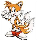 Le meilleur ami de Sonic est ... .