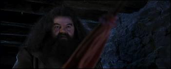Comment Hagrid a-t-il écrit  Happy  sur le gâteau d'anniversaire d' Harry ?