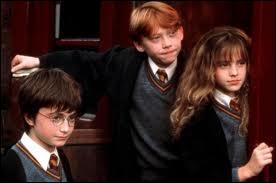 Combien de points ont été enlevés à Hermione, Ron et Harry pour s'être  promener dans l'école  ?