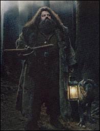 Que dit Hagrid quand il a cassé la porte ?