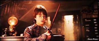 Combien de baguettes Harry a-t-il essayées avant de trouver la bonne ?