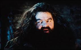 Hagrid a dit que Harry s'est endormi après avoir survolé ...