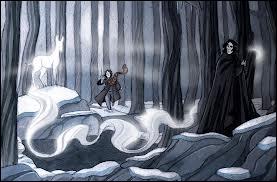 Severus Rogue a pour patronus une biche, mais à cause de qui ?