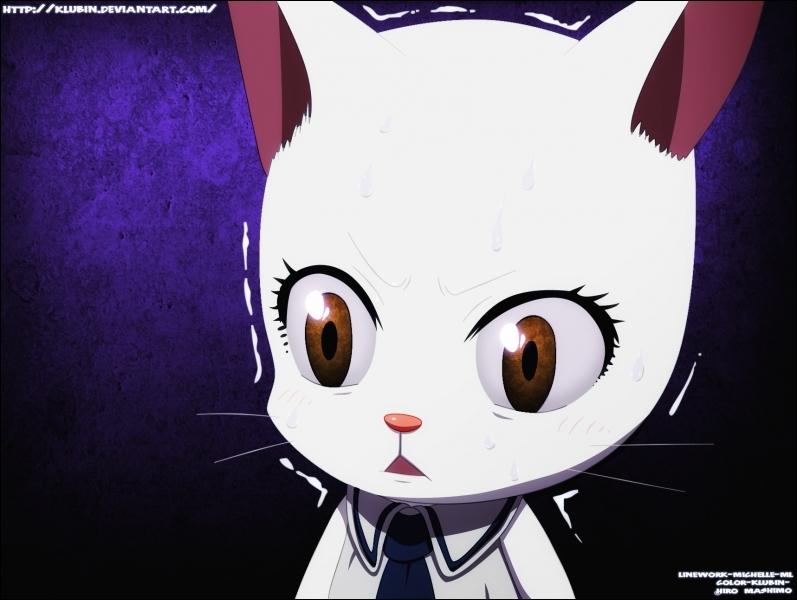 Enfin, quel est le nom de l'Exeed (chat volant) qui suit le personnage précédent ?