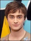 Qui joue le rôle d'Harry Potter ?