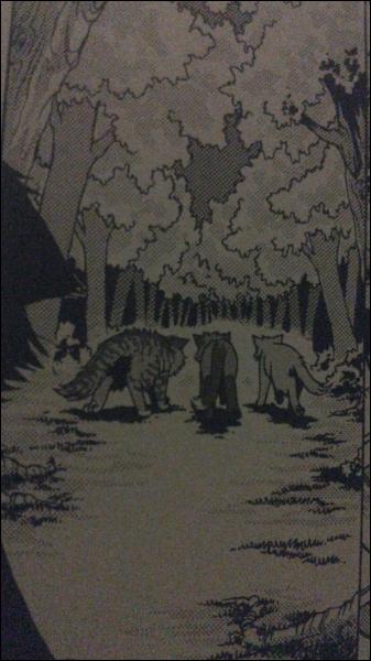Qui rencontre-t-il dans la forêt ?