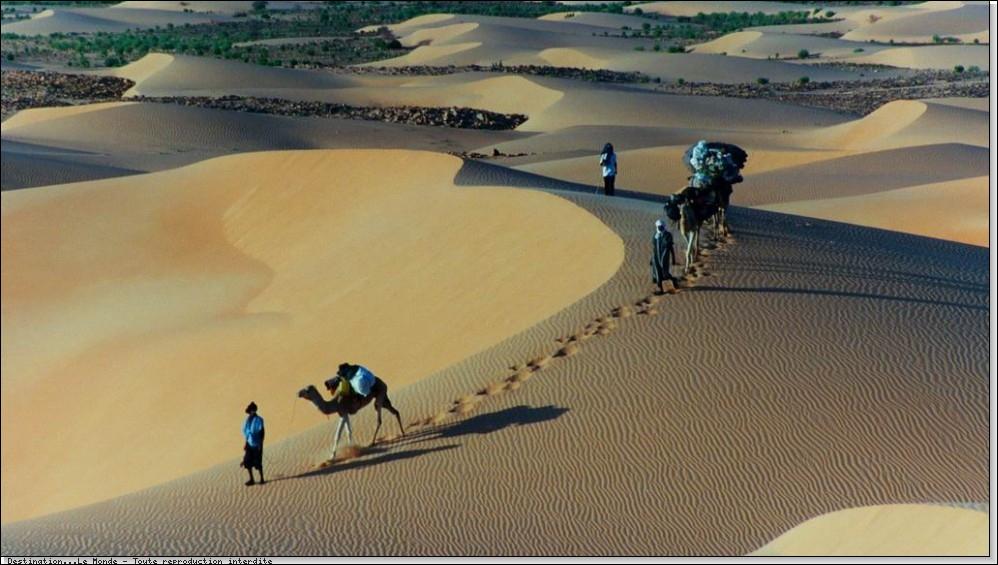 Habillé en boubou maure, de Nouadhibou à Bir Moghrein, je décide d'affronter des vents de sable pour rencontrer des caravanes des peuples arabo-berbères. Je suis ...