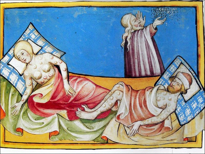 Une grande catastrophe démographique accabla l'Europe et n'épargna aucune région. Toulouse et Avignon furent frappées en 1348. De quelle épidémie est-il question ?