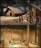 Période de la préhistoire, le néolithique correspond à l'âge ….