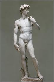 Comment se prénomme le bel éphèbe de Michel-Ange, un chef-d'oeuvre de la sculpture de la Renaissance ?
