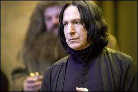 Qui est son professeur de potions ?