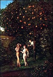 Adam et Eve vivaient dans l'insouciance et l'abondance. Ils pouvaient manger tous les fruits qui se trouvaient dans ce jardin à l'exception d'un seul. Sur quel arbre poussait-il ?