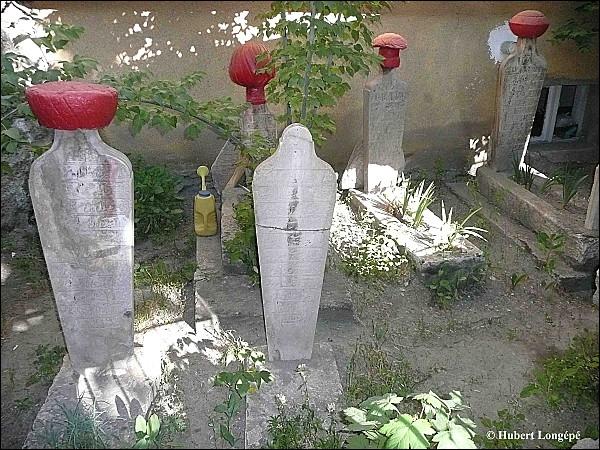Les pierres tombales, en Turquie, sont des espèces de bornes coiffées de turbans ou de fleurs.   Qui est l'auteur, né en 1850 et décédé en 1923, de l'ouvrage  Les Désenchantées