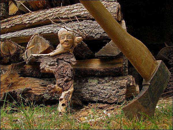 Depuis le XVIIe siècle. Quelle est la signification de l'expression : je vais lui montrer de quel bois je me chauffe ?