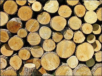 Quels sont les bois de chauffage conseillés afin d'obtenir une combustion optimale ?