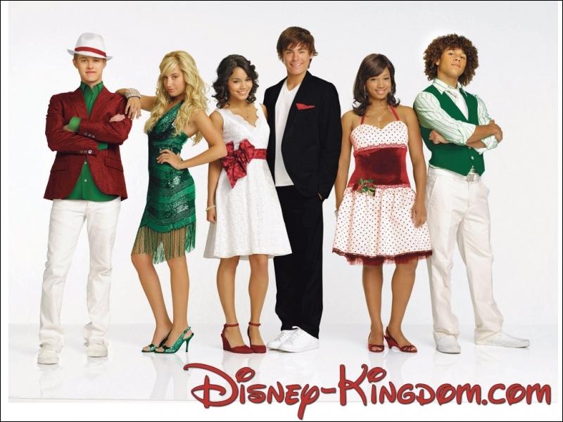 Quels acteurs jouent les rôles principaux dans  High School Musical  ?
