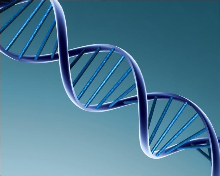 Une autre étude démontre qu'en analysant votre ADN, les chercheurs peuvent...