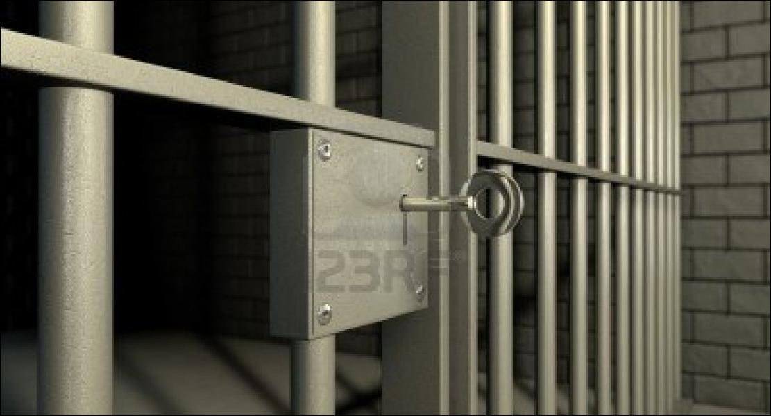 Tome 1- Qui s'est enfermé(e) dans sa cellule ?