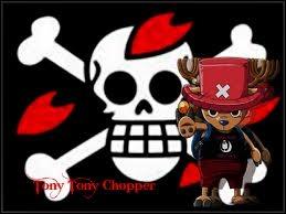 Quel jour est né Tony Tony Chopper ?