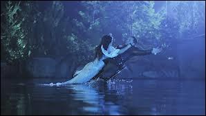 Quel est le nom du lac magique où se trouve la sirène ?