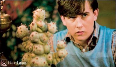 Quelle plante a eu Neville pour ses 15 ans ?