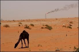 Dans quel émirat se trouvent aujourd'hui les principales réserves gazières et pétrolières ?