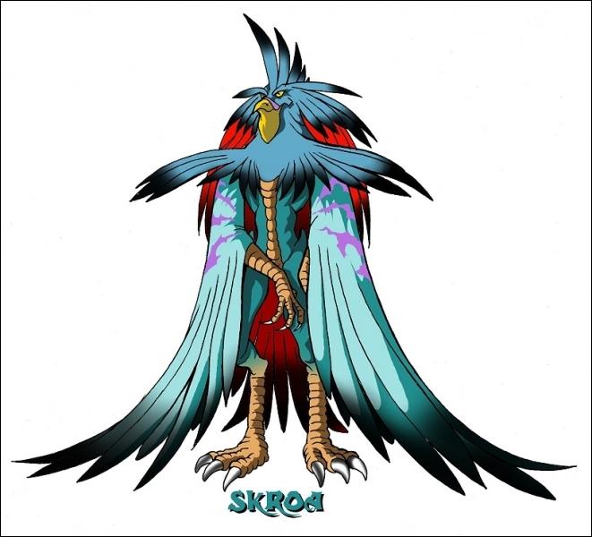 Qui est Skroa ?
