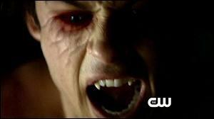 Comment Elena découvre-t-elle l'existence des vampires ?