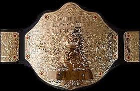 En janvier 2013, qui est champion du monde des poids lourds ?