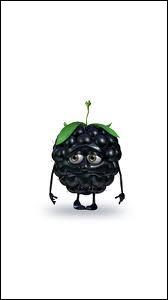 Qui est ce drôle de petit fruit tout triste ?