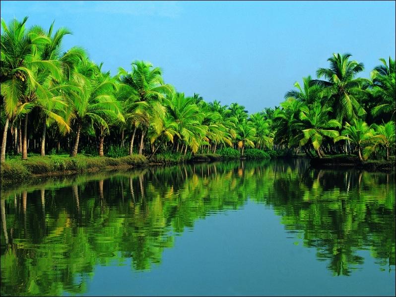 Quelle est la couleur de la pluie qui est tombée le 28 juin 2012 au Kerala ?