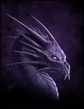 Cobra est-il un chasseur de dragons ?