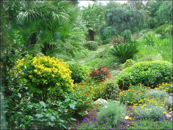 On peut classer les végétaux, très simplement, selon leur taille. Ainsi sont définis des étagements ou strates. Combien y en a-t-il ?