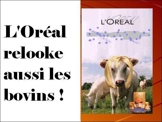 L'enseigne l'Oréal se lance sur un nouveau marché ! Quel slogan bien adapté a-t-elle choisi ?