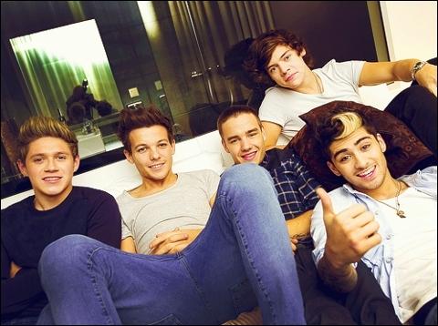 Quelle est la réponse d'Harry lorsqu'on lui a demandé pourquoi Louis et Niall n'avaient pas beaucoup de solos ?