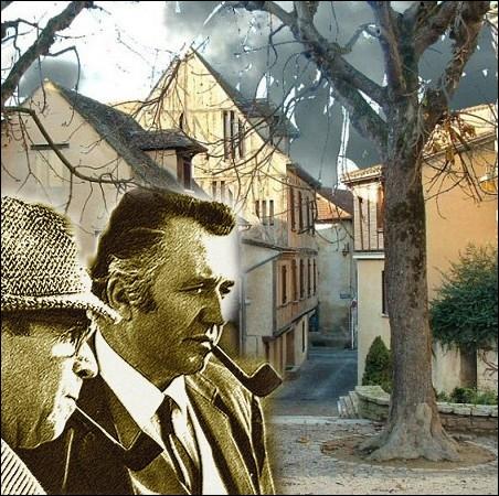 Complétez le titre de ce roman policier de Georges Simenon de la série des enquêtes du commissaire Maigret : le Fou de ... .