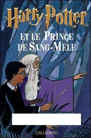 Qui est l'auteur de la suite romanesque fantastique  Harry Potter  ?