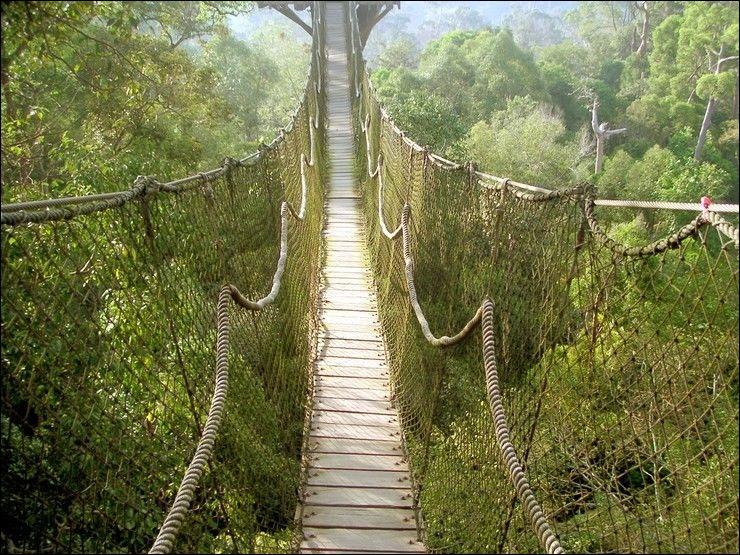 Monsieur Brave va maintenant traverser un petit pont très inquiétant et instable. Il n'a donc pas de :