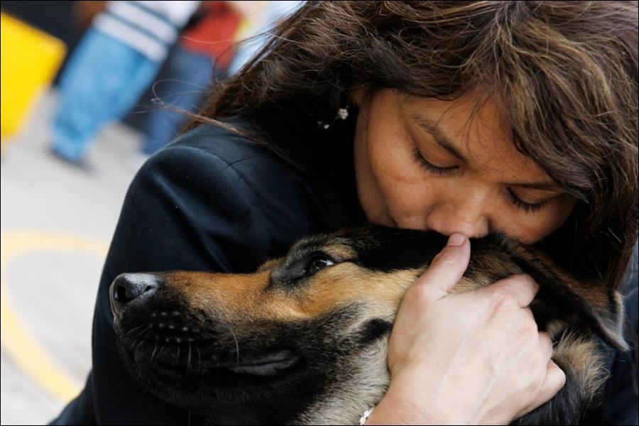 Dans le Maryland, aux Etats-Unis, un baiser donné en public ne doit pas excéder une seconde, s'il dure plus longtemps, vous êtes en infraction avec la loi !