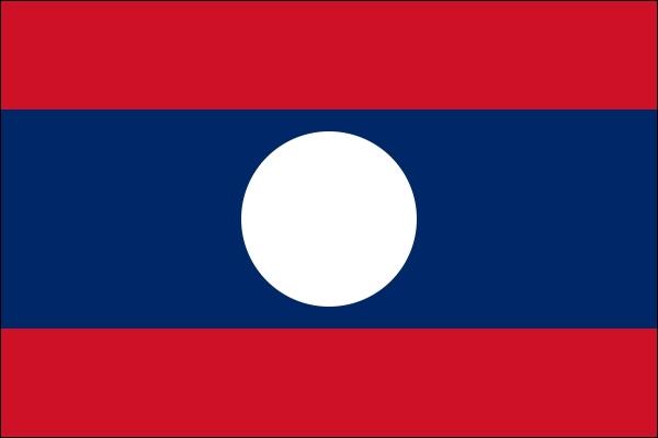 Quel État arbore ce drapeau ?