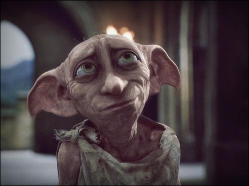 Qu'a-t-on volé à Harry pour la deuxième épreuve du Tournoi des trois sorciers, selon Dobby ?