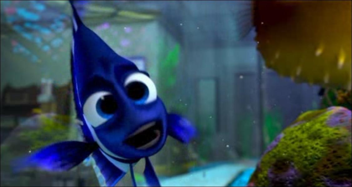 Comment s'appelle le reflet de ce poisson ? (Le monde de Nemo)