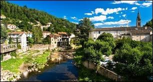 Voici la charmante localité de Vals-les-Bains. Quelle est sa région ?