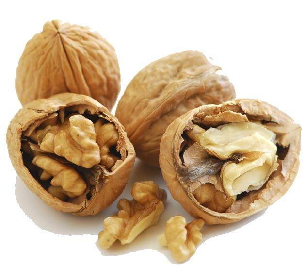 quizz toutes ces noix à traduire en anglais - quiz anglais, traduction