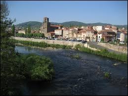 Voici une vue panoramique de Langeac. Attribuez-lui sa région :